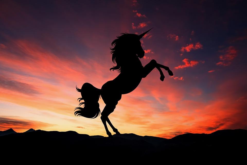 """Ecco il vino rosa """"Lacrime di Unicorno"""": è tempo di magia!"""