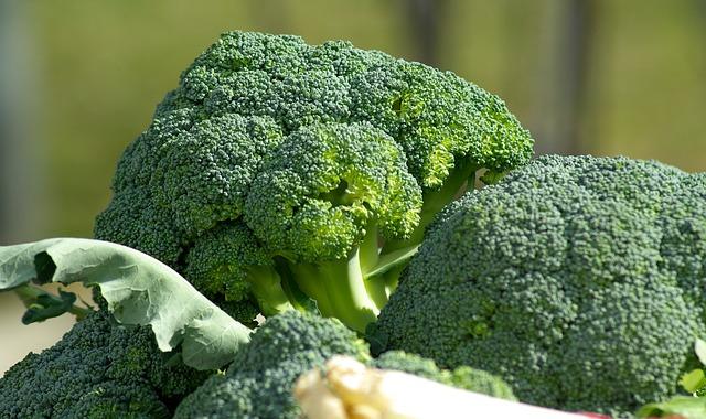 Orecchiette al sugo di broccoli